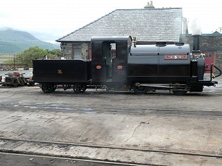 Welsh Pony Steamed Saturday 27 June